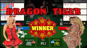 Tips Menang Main Judi Dragon Tiger